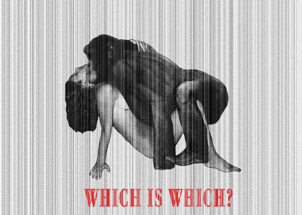 Which is which? - Qual'è quello buono? Digital art, 2012